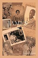 James: A Young Man with an Unplanned Future - Liggens, Eleanor