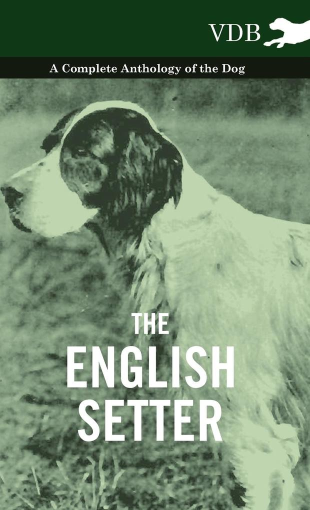 The English Setter - A Complete Anthology of the Dog als Buch von Various - Vintage Dog Books