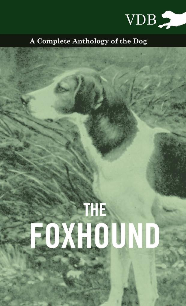 The Foxhound - A Complete Anthology of the Dog als Buch von Various - Vintage Dog Books