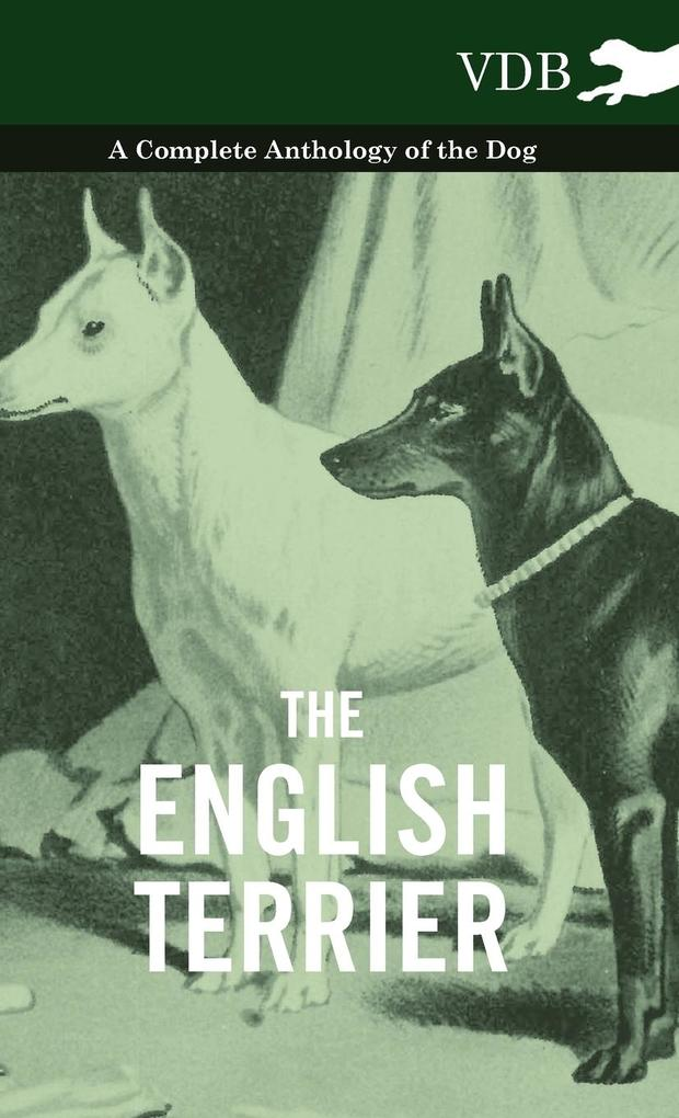 The English Terrier - A Complete Anthology of the Dog als Buch von Various - Vintage Dog Books
