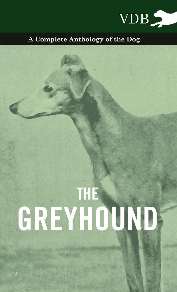 The Greyhound - A Complete Anthology of the Dog als Buch von Various - Vintage Dog Books