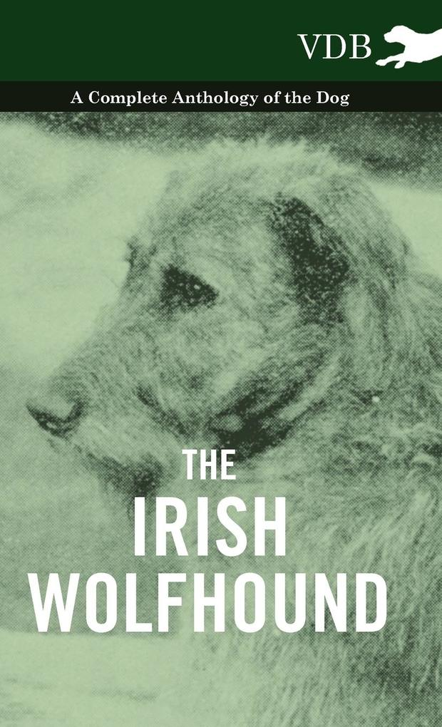 The Irish Wolfhound - A Complete Anthology of the Dog als Buch von Various - Vintage Dog Books