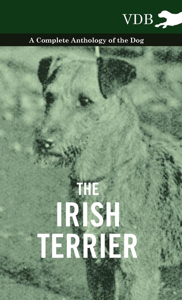 The Irish Terrier - A Complete Anthology of the Dog als Buch von Various - Vintage Dog Books