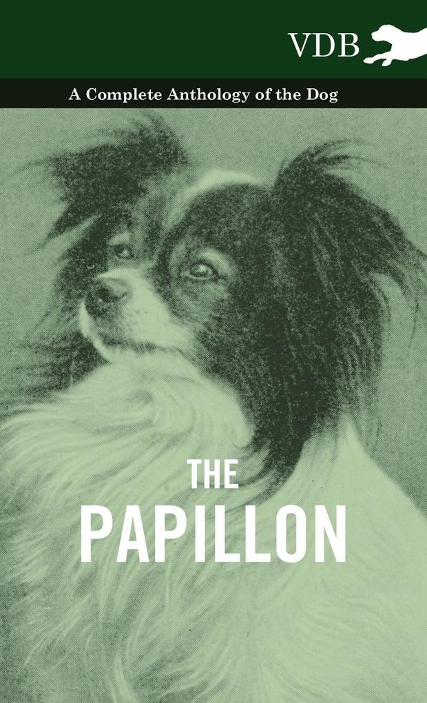 The Papillon - A Complete Anthology of the Dog als Buch von Various - Various