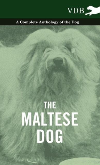 The Maltese Dog - A Complete Anthology of the Dog als Buch von Various - Vintage Dog Books