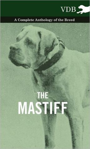 The Mastiff - A Complete Anthology of the Breed
