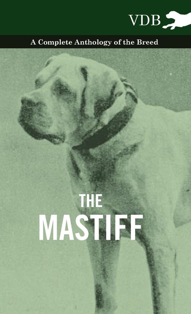 The Mastiff - A Complete Anthology of the Breed als Buch von Various - Vintage Dog Books