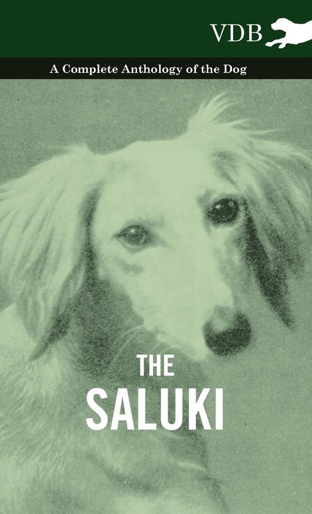 The Saluki - A Complete Anthology of the Dog als Buch von Various - Vintage Dog Books
