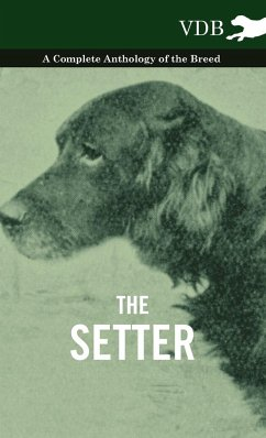The Setter - A Complete Anthology of the Breed - Various