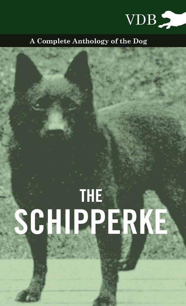 The Schipperke - A Complete Anthology of the Dog als Buch von Various - Various