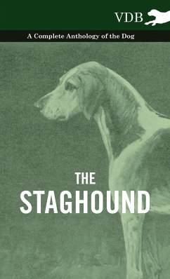 The Staghound - A Complete Anthology of the Dog - Various