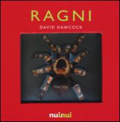 Ragni. Libro pop-up