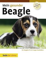 Mein gesunder Beagle