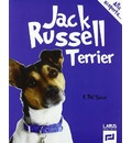Jack Russell terrier - Emanuele Dal Secco